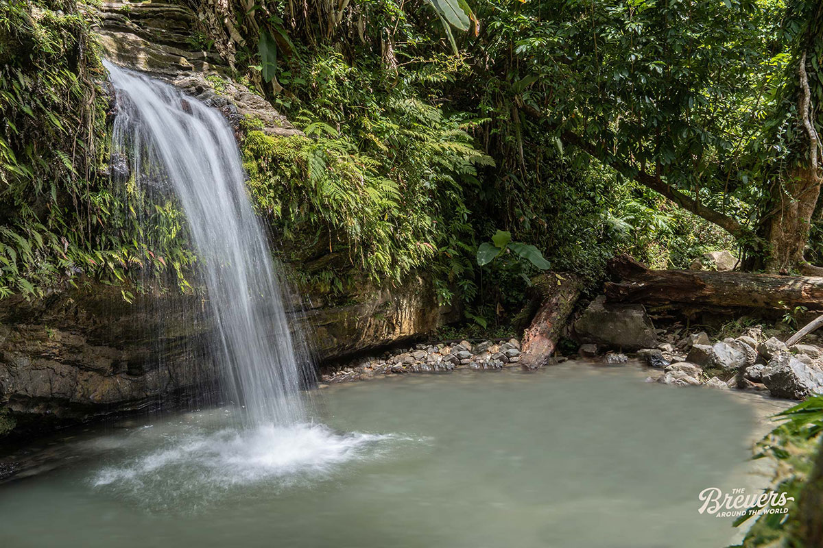 Natural Pool im El Yunque National Forest