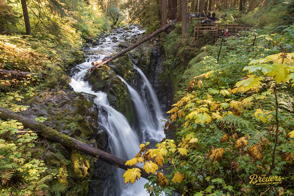 Sol Duc Wasserfälle im Olympic Nationalpark